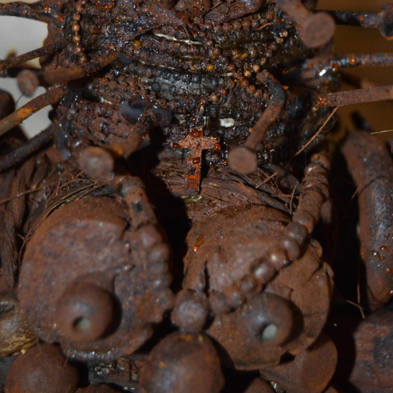 Carre detail corps fetiche intimite 2400x2400